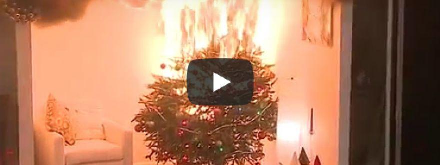 Christmas tree fires