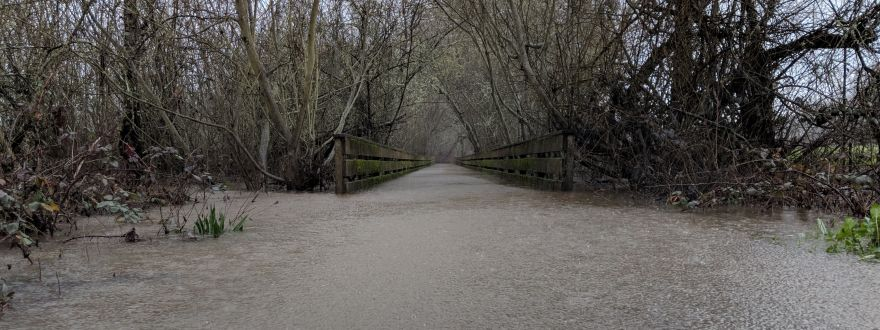 FAQ: Flood Insurance
