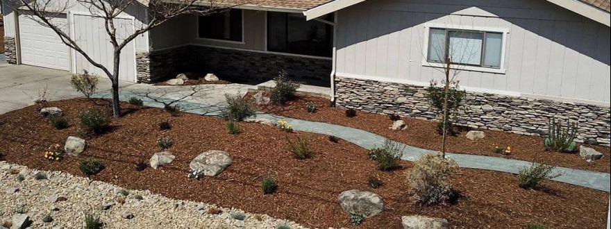 Santa Rosa's Cash for Grass