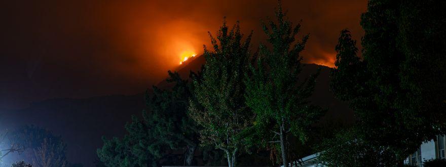 Sonoma County is Recipient of $37 million grant for wildfire mitigation
