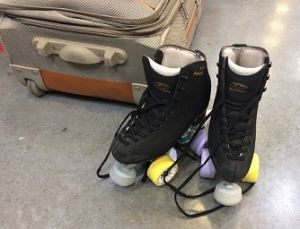 Skating Rink Insurance- Roller and Ice