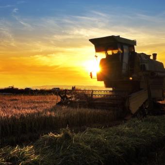 Georgia Agribusiness Insurance