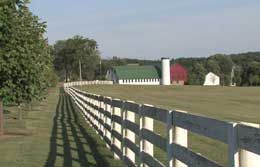 New York Farm & Ranch Insurance