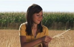 Idaho Falls, Idaho Agribusiness Insurance