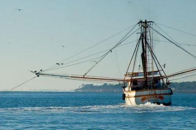 Georgia, Florida and South Carolina Boat & Watercraft Insurance