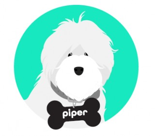 text Piper for your proof of insurance