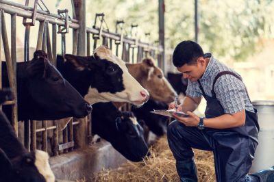 Agribusiness Insurance