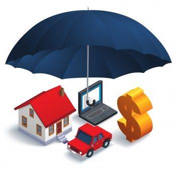 Insurance News Feed