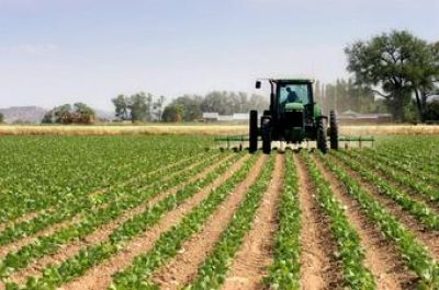 New Mexico Crop Insurance